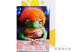 米アヴァンティプレス社 リアルなカエルイラストカード