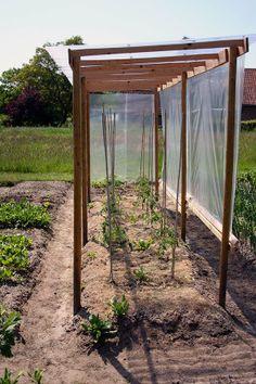 Veg Garden, Vegetable Garden Design, Garden Trellis, Garden Beds, Cold Frame, Garden Structures, Garden Planning, Garden Projects, Garden Inspiration