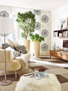 Living room plants  Drachenbaum (Dracaena) und Areca-Palme (Chrysalidocarpus lutescens)