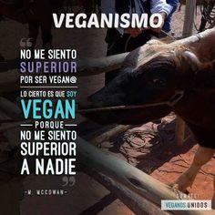 Cocina – Recetas y Consejos Vegan Facts, Vegan Memes, Vegan Quotes, Save Nature, Star Beauty, Why Vegan, Vegan Animals, Vegan Fashion, Vegan Lifestyle