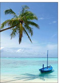 Carte Bateau et palmier au paradis pour envoyer par La Poste, sur Merci-Facteur !