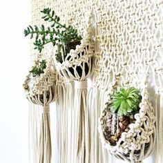 best Ideas for plants diy wall hanging planters Macrame Wall Hanging Patterns, Macrame Hanging Planter, Hanging Succulents, Macrame Patterns, Wall Patterns, Hanging Planters, Macrame Plant Hanger Diy, Macreme Plant Hanger, Stitch Patterns