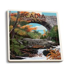 Acadia National Park, ME Stone (Grey) Bridge - LP Artwork (Set of 4 Ceramic Coasters) (Cork)