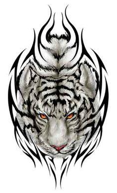 tiger maori tattoo - Pesquisa Google