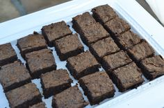 kale brownies - these are seriously the most delicious brownies I have ever made from scratch