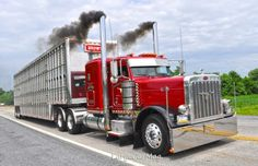 Smokin Red Pete Cattle Truck