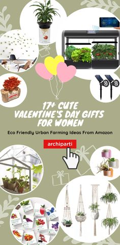 Valentine's Day Gifts Ideas for CRUSH📌 more creative natural green gifts ideas that are eco-friendly. Indoor Plants & succulent easy crafts are the best gifts for environment, secret crush, coworkers, Diy Gifts, Best Gifts, Cheap Gifts, Unique Gifts, Handmade Gifts, Retro Living Rooms, Kid Rooms, Cute Valentines Day Gifts, Green Gifts