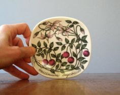 Vintage Arabia Finland Botanica Plate - Esteri Tomula Cranberry Flower