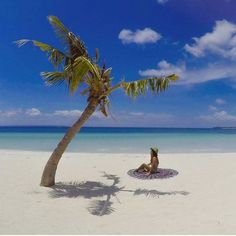 Solitude. Sugar Beach. Bantayan Island, Philippines. Photo by @ninjarod