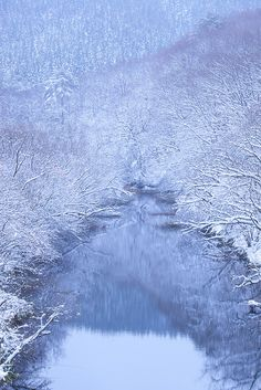 En los hogares de los dioses...bellísimo invierno blanco en Hiroshima, en Japón.