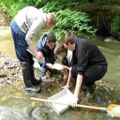 Career Positions Available In Environmental Sciences