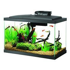 Aquariums & Tanks Marineland 5 Gallon Portrait Glass Led Aquarium Kit Luxuriant In Design Fish & Aquariums