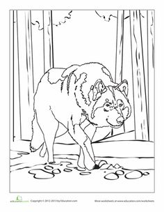 printable wolf coloring pages for home and school wolves and wolf