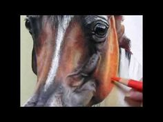 """Pastel Painting Demonstration-Arabian Horse by Roberta """"Roby"""" Baer PSA - YouTube"""