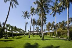 the tropical garden complement the villa