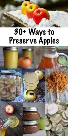 30+ Ways to Preserve Apples ~ Historical and modern apple preservation techniques to put up the apple harvest this fall. Looking for the ultimate guide to preserving apples? Look no further! #selfreliance #preservation #foodpreservation #canning #fall #applerecipes #foodpreservation #preserving #homecanning #canningrecipes #recipe #apples Preserving Apples, Canning Apples, Preserving Food, Apple Salsa, Apple Chutney, Apple Fruit, Fresco, Making Hard Cider, Apple Wine
