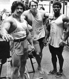 Ed Corney, Arnold Schwarzenegger & Robby Robinson
