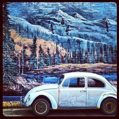 Mural And Volkswagen Beetle In Western Colorado  Car Cars Automobile Slugbug Art Painting
