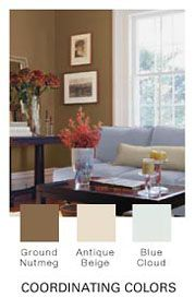 New Place Color Ideas on Pinterest   Soft Suede, Living ...