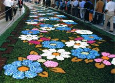 Corpus de Ponteareas (provincia de Pontevedra), fiesta de Interés Turístico Internacional. Se elaboran Km de alfombras florales como ofrenda al Santísimo. Las alfombras son hechas por la gente del pueblo, de todas las edades y profesiones. El trabajo empieza el mes anterior, recogiendo, deshojando y clasificando las flores (dejando para el final las más delicadas)