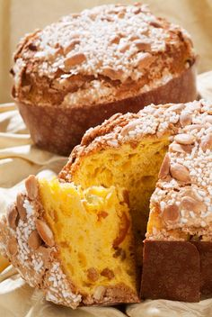 Maria's recipe for Italian Panettone. Turn your Christmas Italian in a few simple steps.