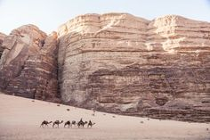 Camel caravan  Photo by Stanley Dellimore -- National Geographic Your Shot