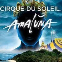 To celebrate the 20th year at the famous Royal Albert Hall you can get you can get free Cirque du Soleil London 2016 Tickets, this one is great because its for the premiere performance of Amaluna.