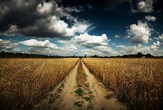 Dirt road:)
