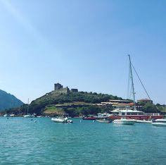 Le petit port tout mignon de Girolata (haute corse)... Et ses vaches sur la plage!!! #corse #corsica #girolata #girolataharbor #portdegirolata #hautecorse #happy #niceday #sun #sunny