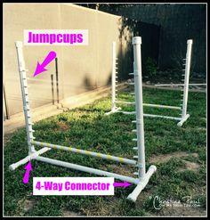 Backyard Agility Equipment for dogs!