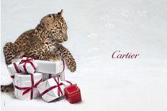 StyleLab: Cartier Winter Tale