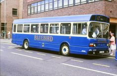 OLS815T Bluebird Bus bus photograph | eBay