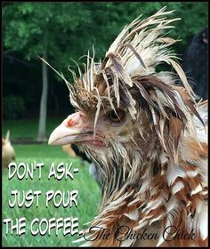 For all my coffee drinking friends . and all those who enjoy poking fun at coffee drinkers! Coffee Talk, Coffee Is Life, I Love Coffee, Coffee Break, My Coffee, Morning Coffee, Good Morning, Coffee Cups, Coffee Lovers