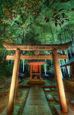 In Kyoto, there is a wonderful and unexpected temple that weaves through an old bamboo forest.