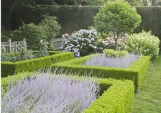 Love the colors and the form of this garden design - Ina Garten Boxwood Landscaping, Boxwood Garden, Topiary Garden, Backyard Landscaping, Formal Gardens, Outdoor Gardens, Landscape Design, Garden Design, Lavender Garden