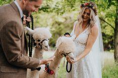 Boho Wedding, Wedding Day, Alpaca Stuffed Animal, Advice For Bride, Tatty Devine, Ring Bearer, First Dance, Looking Gorgeous, Alpacas
