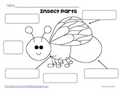 math worksheet : free download  2 pages ants  canhave areand label the  : Insects Worksheets For Kindergarten