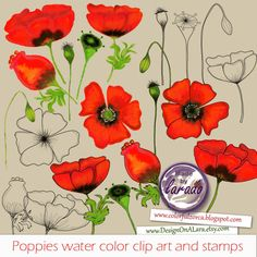 Poppies Digital Clpart and Stamps, handpainted poppies stamp, watercolor poppy clip art, Poppy Flower Clipart, Watercolor Floral Clipart by DesignOnALara on Etsy Poppy Flower Painting, Flower Art, Poppy Clips, Painted Rocks, Hand Painted, Watercolor Poppies, Poppy Pattern, Party Favor Tags, Flower Clipart