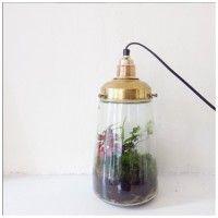 Lamp Pickles,