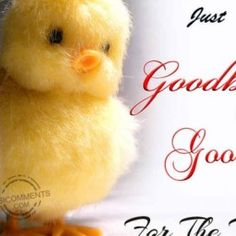 Funny Quotes to Say Good Luck