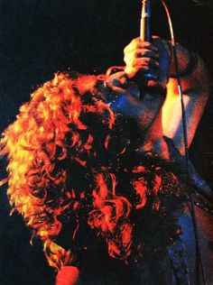 Robert Plant / Led Zeppelin