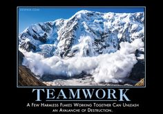 Teamwork - Despair, Inc. Comedy Bang Bang, Art Of War Quotes, Funny Quotes, Funny Memes, Wise Quotes, Quotable Quotes, Animal Puns, Demotivational Posters, Business Motivation