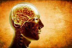 Lewy Body Dementia or Alzheimer's Disease? What Is Dementia, Dementia Care, Alzheimer's And Dementia, Alzheimers, Superfoods, Brain Size, Schizophrenia, Brain Health, Frases