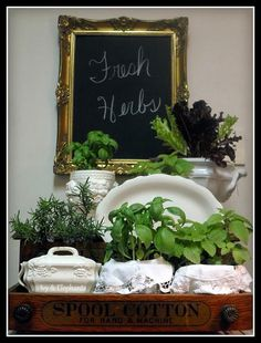 Ironstone Tureens repurposed as an indoor herb garden via Ivy & Elephants.  Featured at the Knick of Time Vintage Inspiration party - http://knickoftimeinteriors.blogspot.com/2013/10/knick-of-time-tuesday-109-vintage.html