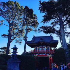 Japanese Tea Garden San Francisco #socal #sanfran #sanfrancisco #sculpturedgarden #reflections #architecture #bonsai #blueskies #california #dusk #elite_shotz #globalnomads #globe_travel #garden #ic_california #ic_sanfrancisco #japan #jaw_dropping_shots