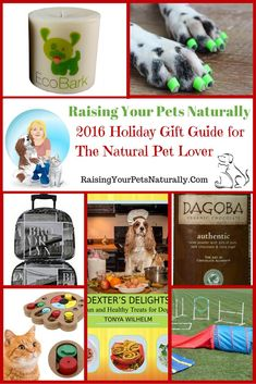 This holiday gift guide for 2016 is unique - only the best companies, brands, and products make the guide. If you are looking for unique Christmas gifts for dogs or fun Christmas gifts for cats, this pet gift guide is for you. But it's not just about our