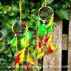 Add some rainbow magic with these super cute Dreamcatchers now listed in the shop www.spiritualgiftsireland.com  #rainbow #rainbows #magic #magical  #dreams #dreambig #dreamcatcher #feather #feathers #inspo #inspohome #garden #gardens #rainbowdash #multicolor #multicolored #vibes #goodvibes #bohemian #bohemianstyle #bohostyle #bohochic #gypsy #gypsysoul #gypsystyle #accessories #moonchild #earthchild #sunchild #ireland