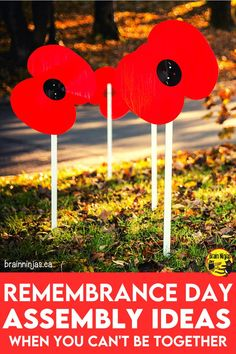 Do you have to put together a Remembrance Day assembly but you have lots of safety restrictions happening. We've brainstormed lots of ideas that can help you get your assembly put together whether you need to have something for distance learning or in person classes. If you're trying to figure out what to do, look no further. Stop by and let us help you out. Grade 1 Sight Words, Remembrance Day Art, Parts Of The Heart, Moment Of Silence, Virtual Art, Canadian History, School Programs, Canada Day, Art Classroom
