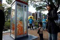 Public phones are outdated due to cellular phones so the phone booths were converted to Aquariums in Osaka, Japan.