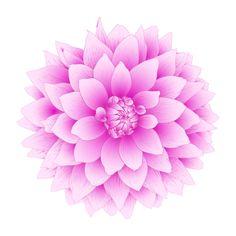 Purple-dahlia-tattoo-idea.jpg 480×480 pixels